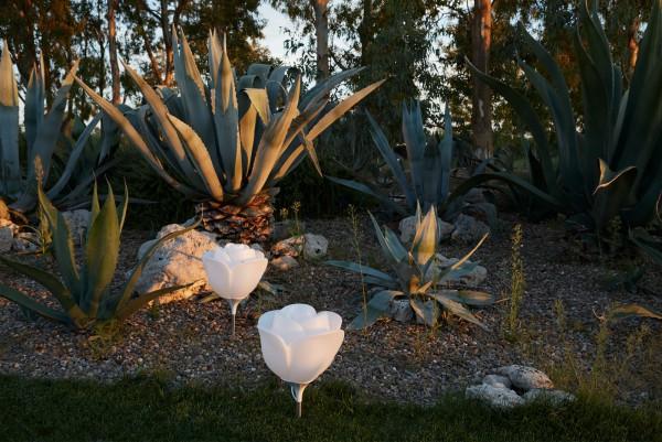 Baby-love-garden